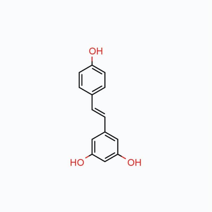 Trans-Resveratrol – Powder, 10g