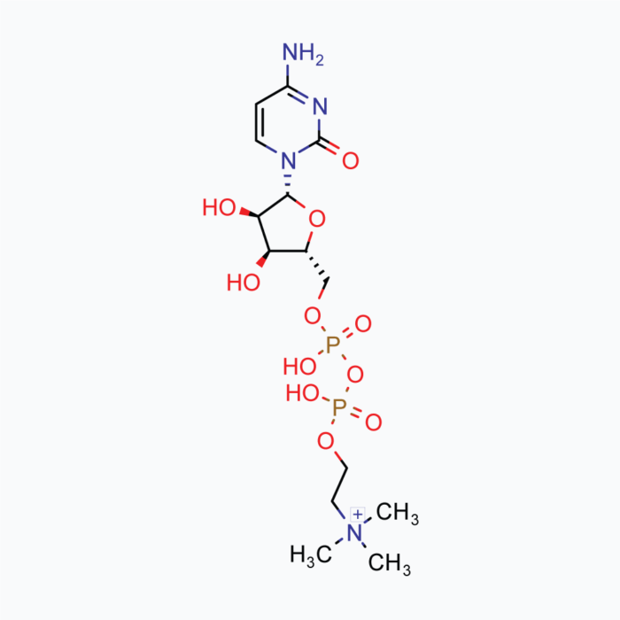CDP Choline – Powder, 50g