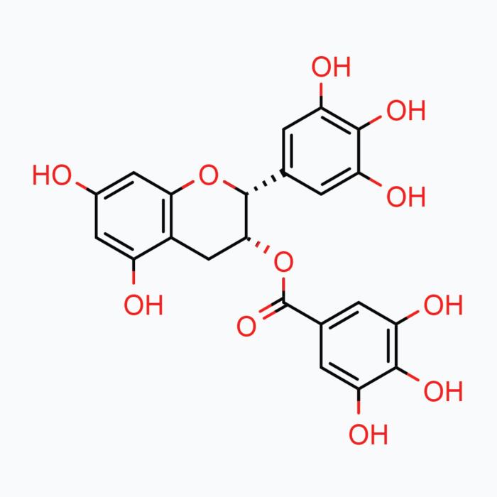 Green Tea Phytosome – Powder, 20g