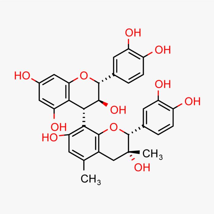 Grape Seed Phytosome – Powder, 10g