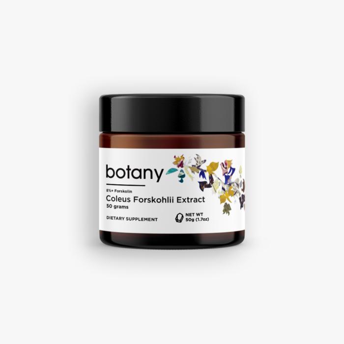 Coleus Forskohlii Extract | 8%+ Forskolin – Powder, 50g